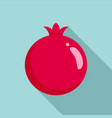 pomegranate icon flat style vector image