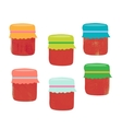 Set from colorful jars vector image vector image