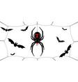 spider black widow cobweb bats red black spider vector image