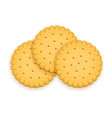 three delicious round biscuit vector image vector image