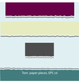 Torn paper pieces vector image vector image