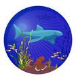 deep sea creatures big shark small fish and vector image