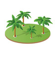 a set isometric palm vector image