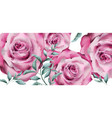 delicate rose flowers banner watercolor vector image vector image