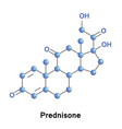 prednisone is a synthetic corticosteroid vector image vector image