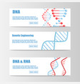set scientific banners with molecular structure vector image vector image