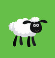 standing cartoon sheep vector image vector image