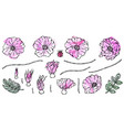 watercolor painting of wild rose pink flower dog vector image vector image