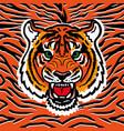 wild tiger print vector image vector image