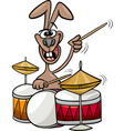 bunny playing drums cartoon vector image vector image