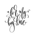 for my big love - hand lettering inscription text vector image vector image