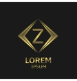 Golden Z letter vector image vector image