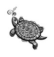 hand drawn monochrome doodle turtle decorated vector image vector image