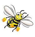 happy bee with honey in flight vector image vector image