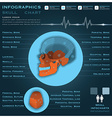 Skull Infographic Infocharts Health And Medical vector image