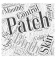 The Birth Control Patch Word Cloud Concept vector image vector image