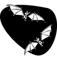 Two bats flying