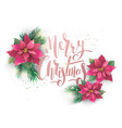 christmas poinsettia design card vector image