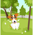 cute jack russell terrier dog with angel wings and vector image vector image