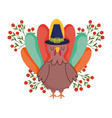 happy thanksgiving day turkey with pilgrim hat vector image vector image