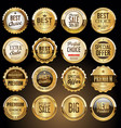 luxury premium golden badges and labels 2 vector image vector image
