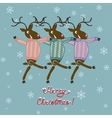 Christmas deer in sweater vector image