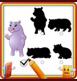 find the correct shadow cartoon funny hippo stand vector image