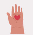 heart in the palm isolated on white background vector image