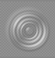 realistic water ripple sound wave splash effects vector image