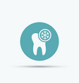 tooth and snowflake isolated round icon vector image vector image