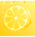 Lemon with bubbles vector image