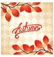 Colorful autumn card vector image vector image