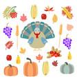 turkey pumpkins and vegetables vector image vector image