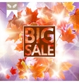 Card with maple leaves autumn sale vector image vector image
