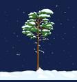 cartoon evergreen pine tree in snowy winter night vector image vector image
