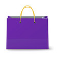 close-up view of classic violet paper shopping vector image