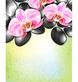 Green Spa Background with Flowers and Hot Stones vector image vector image
