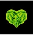 Eco love heart vector image
