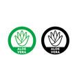 aloe vera label green leaf icon vector image vector image
