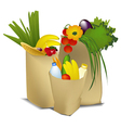 Eco shopping vector image vector image