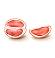 half and slice red grapefruit vector image