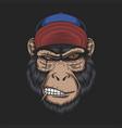 monkey head cap vector image