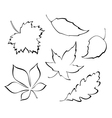 Stylized leaves vector image vector image