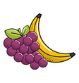 grape and babana fruit icon vector image vector image