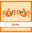 Spider funny characters on a orange background vector image