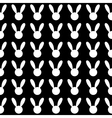 White Rabbit Black Background vector image vector image