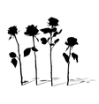 roses silhouettes vector image