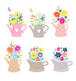 bouquet daisy and tulip flowers in a watering vector image vector image