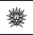 lion head logo template vector image vector image