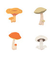 mushroom nature cook food different kinds of vector image vector image